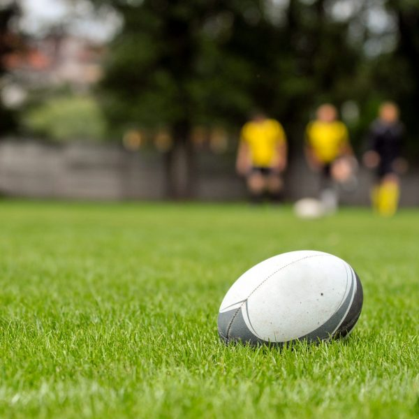 Rugby,Ball,At,Green,Grass.,Photo,Taken,At,Rugby,Training.